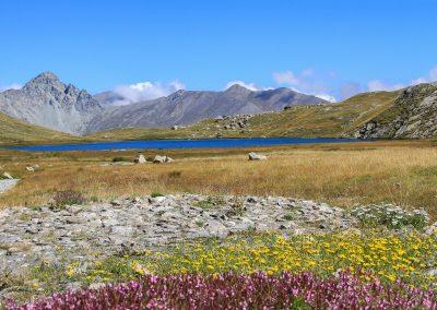 Lac Foréant 1