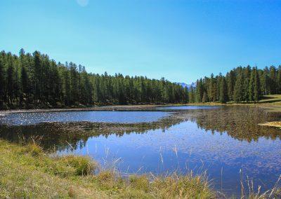 Lac de roue 4